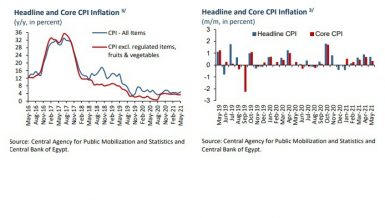 Egypt's annual urban inflation rises to 4.8% in May 2021: CBE