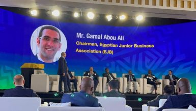 SMEs, startups, youth key to increased inter-African investments: EJB Chairperson