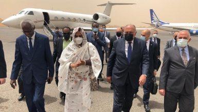 Egypt, Sudan call for active intervention of international community on Nile dam