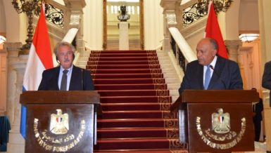 Europe understands aspects of Ethiopian dam issue: Shoukry