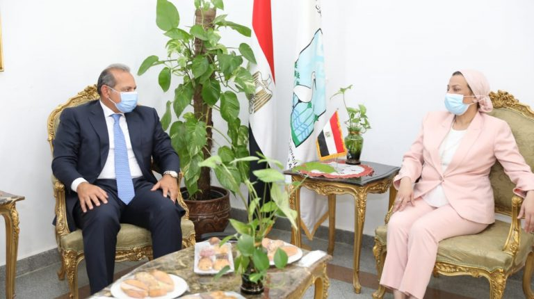 Environment Ministry, NBE partner to support 'Eco Egypt' campaign