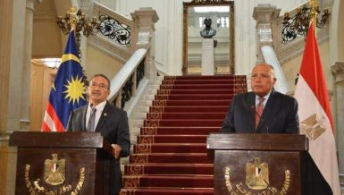 Egypt, Malaysia discuss bilateral, international issues of common interest
