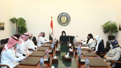Egypt, Saudi Arabia launch website for financing MSMEs