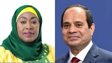 Egypt's Al-Sisi discusses GERD developments with Tanzanian counterpart