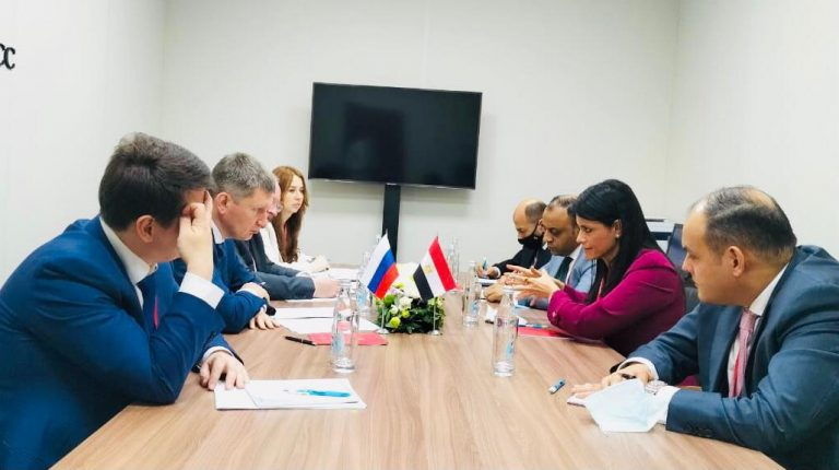 Egypt, Russia discuss future areas for partnerships