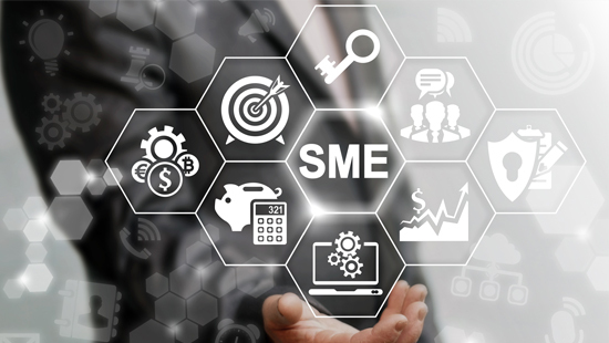 Egyptian government, banking sector take strong action to support MSMEs