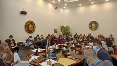 Egypt holds meeting in run-up to 1st Joint Higher Committee session with South Sudan