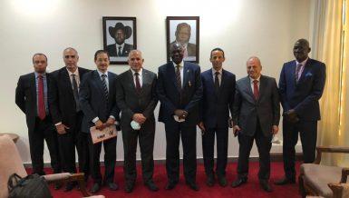 Egypt, South Sudan discuss GERD updates, regional water issues