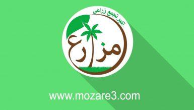 Mozare3