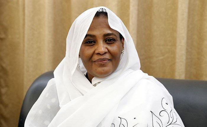 We appreciate Russia's position on Ethiopian dam: Sudanese FM
