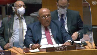 Egypt's Foreign Minister full speech on GERD at UNSC