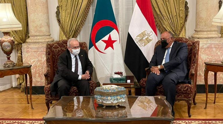 Egypt's Minister of Foreign Affairs Sameh Shoukry with Algeria Foreign Minister Ramtane Lamamra in Cairo.