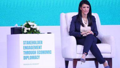 Egypt's documentation of international cooperation, development financing experience applauded