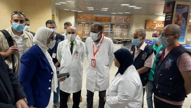 Health Minister inspects quarantine at Luxor Airport, COVID-19 preventive measures