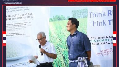 Thailand's rice exports to Egypt amount to $4.7m in 2020: Thai Embassy