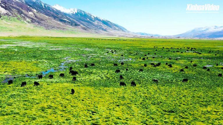Enter the 2nd Tibet Internet Photography & Video Festival