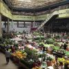 Exploring Asia's largest fresh cut flower trading market with Dale Fox